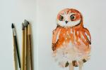 1-2016-Akvarel-3-5