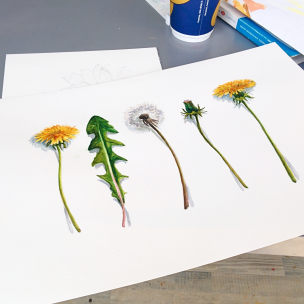 workshop-akvarel-16