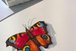 workshop-akvarel-7