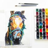 1-2016-Akvarel-Illustration-17