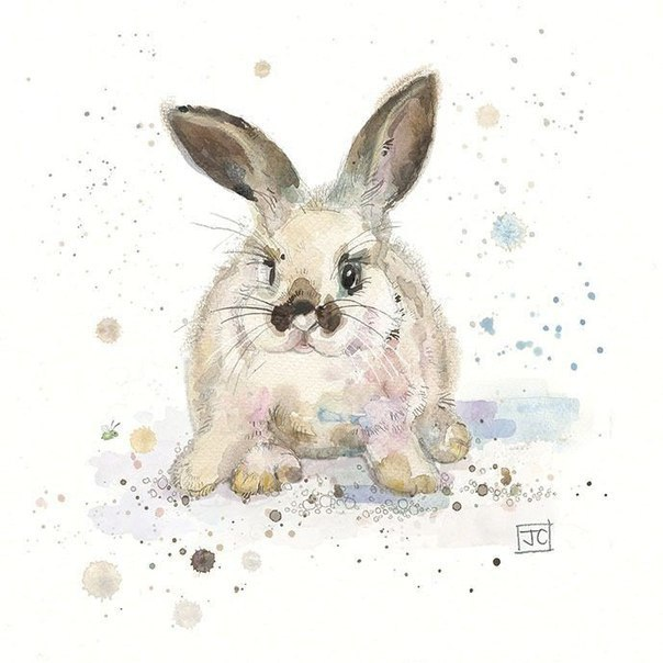 Jane-Crowther-2