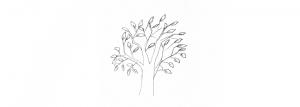Jak Nakreslit Strom Draw Planet Vytvarne Ateliery
